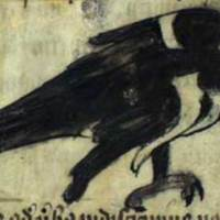 bestiary magpie.jpg