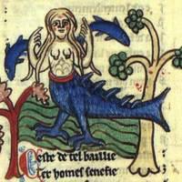 English Manuscript Siren image.jpg